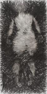 Edda tussen het licht houtskooltekening 192cm x 976 cm nominee tekening van het jaar